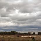 landschappen - schapen